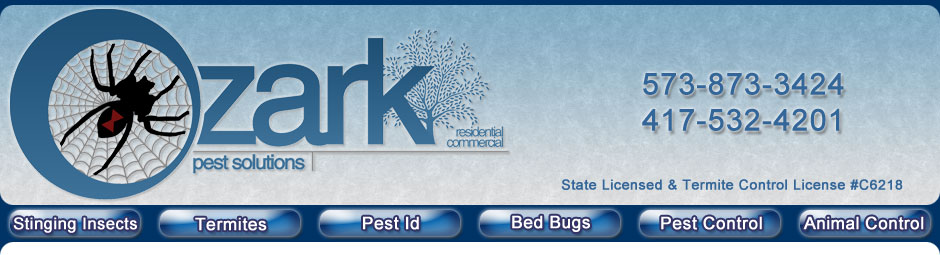 Ozark Pest Solutions